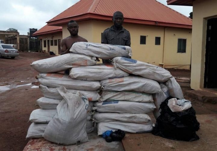 3 Suspects Nabbed With 16 Bags Of Indian Hemp In Enugu