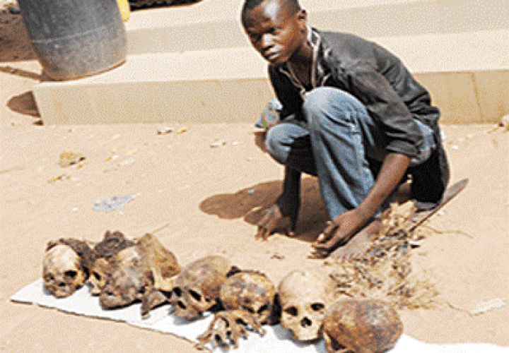 Police Arrest Suspected Ritualist with Seven Human Heads